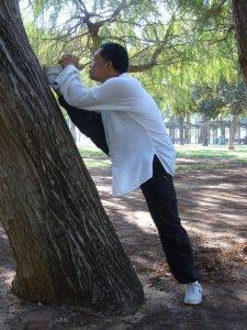 Zhou stretching