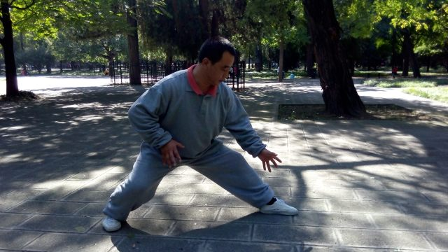Deng Fuli demonstrating Fuhu Zhuang (crouching tiger pose)