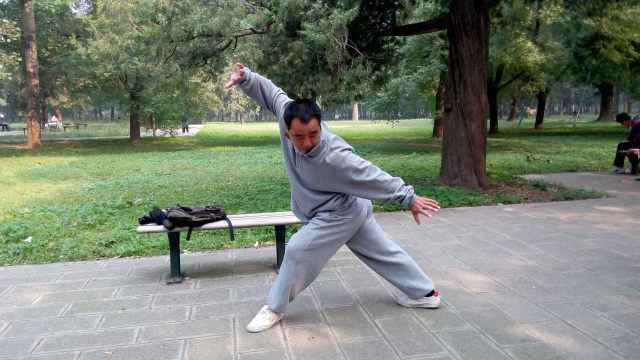 Deng Fuli demonstrating Xiang Long Zhuang (subduing dragon pose)